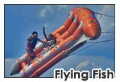 Bali watersport tanjung benoa - Flying Fish